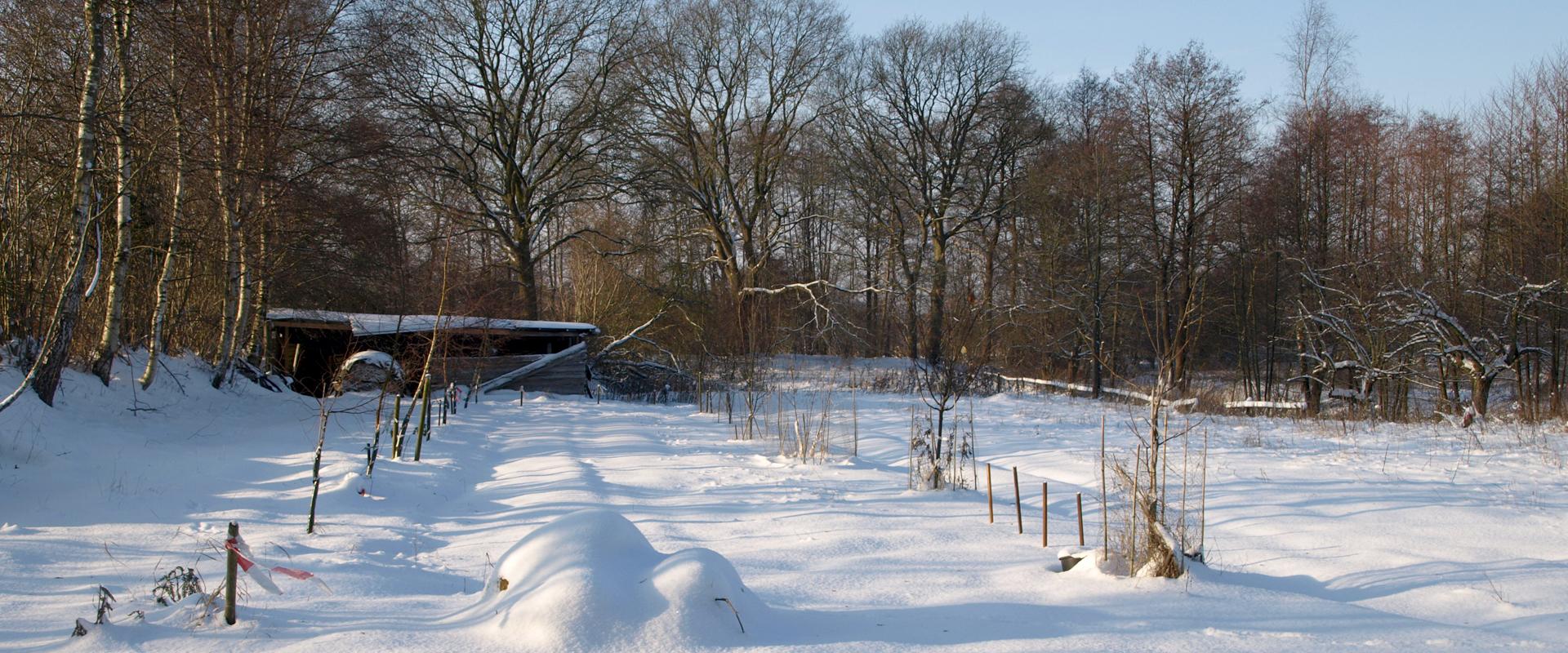 Wintererwachen bei Worm Wohn-design